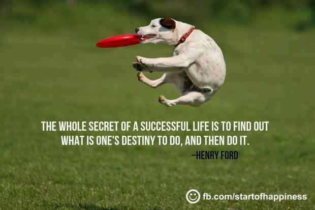 Success Quote 20